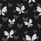 Vector seamless pattern with gray butterfly Stock Photo