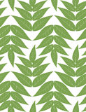 Vector seamless pattern from green leaves Stock Photos