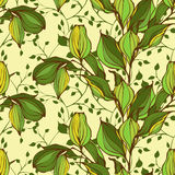 Vector seamless pattern with green leaves Royalty Free Stock Photos