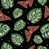 Vector seamless pattern of green monstera leaves with butterflies on black background with stars stock illustration