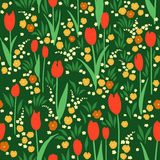 Vector seamless pattern, green summer meadow with flowers. Vector seamless pattern with green summer meadow. Blooming flowers, red tulips, orange pansies Royalty Free Stock Photography