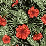 Vector seamless pattern of green tropical leaves with red hibiscus flowers on black background royalty free illustration