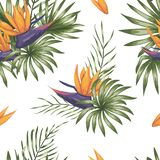 Vector seamless pattern of green tropical leaves with strelitzia flowers stock illustration