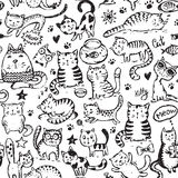 Vector seamless pattern with hand draw funny cats in sketch style Royalty Free Stock Image