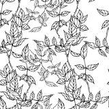 Vector seamless pattern with hand drawing black and white leaves Royalty Free Stock Photo