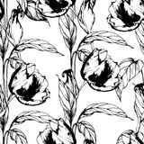 Vector seamless pattern with hand drawing black and white tulips flowers Stock Images