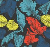 Vector seamless pattern with hand drawn dry autumn leaves. Royalty Free Stock Images