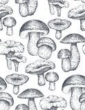 Vector seamless pattern with hand drawn forest mushrooms. Royalty Free Stock Photo
