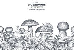 Vector seamless pattern with hand drawn forest mushrooms Royalty Free Stock Photos