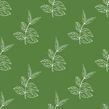 Vector seamless pattern with hand drawn herbal elements. Vector seamless pattern with hand drawn herbal elements in green colours Stock Photo