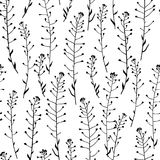 Hand drawn grass pattern. Vector seamless pattern with hand drawn meadow grass. Ink drawing, graphic style Stock Photography