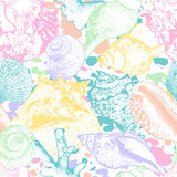 Vector seamless pattern with hand drawn multicolor seashells. Colorful abstract background with shells. Stock Photography