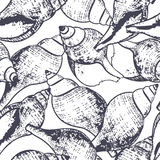 Vector seamless pattern with hand drawn outline spiral sea shells. Sketch style black and white background. Royalty Free Stock Images
