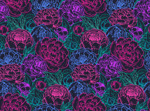 Vector seamless pattern with hand drawn peony flowers. Royalty Free Stock Images