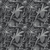 Vector seamless pattern with hand drawn winter plants Stock Photos