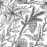 Vector seamless pattern with hand drawn winter plants Stock Image