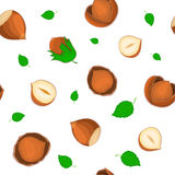 Vector seamless pattern hazelnut nut. Illustration of peeled nuts and in shell isolated on white background it can be Stock Photo