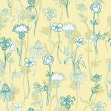 Vector seamless pattern with herbs Stock Photography