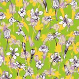Vector seamless pattern with herbs Royalty Free Stock Images