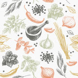 Vector seamless pattern with herbs and spices vector illustration