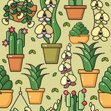 Vector seamless pattern of  house plants in ceramic pots. Stock Images