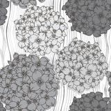 Vector seamless pattern with  hydrangeas. Monochrome floral back Stock Images