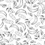 Vector seamless pattern of isolated banana. hand drawn colored exotic fruits. Engraved art. Stock Photography