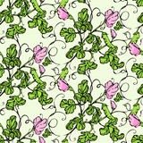 Vector seamless pattern with lathyrus flower Stock Images