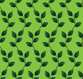 Vector seamless pattern with leaf. Green background. Pattern seamless  illustration. Concept background picture Royalty Free Stock Photos