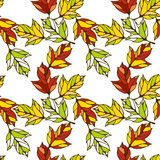 Vector seamless pattern with leaves Royalty Free Stock Photos