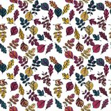 Vector seamless pattern with leaves Royalty Free Stock Photo