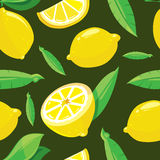 Vector seamless pattern with lemon slices Stock Photography