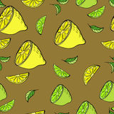 Vector seamless pattern with lemons and lime. Citrus seamless pattern with lemon and lime in hand-drawn style Royalty Free Stock Photo