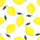 Vector seamless pattern with lemons on white background Stock Photos