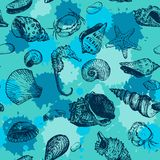 Vector seamless pattern with line drawing shells Royalty Free Stock Images