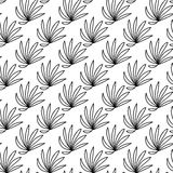 Vector seamless pattern. Linear graphic design. Floral linear background. Royalty Free Stock Photo