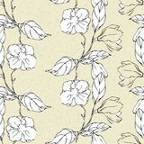 Vector seamless pattern with magnolia flower Stock Image