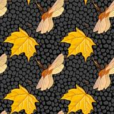 Vector seamless pattern with maple seeds Royalty Free Stock Image