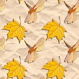 Vector seamless pattern with maple seeds Stock Photography