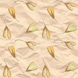 Vector seamless pattern with maple seeds Stock Photos