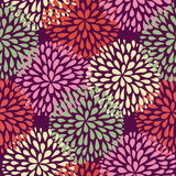 Vector seamless pattern. Modern floral texture. Royalty Free Stock Image