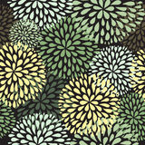Vector seamless pattern. Modern floral texture. Stock Image