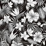 Vector seamless pattern of monochrome tropical leaves vector illustration