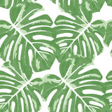 Vector seamless pattern with monstera leaves. Monochrome tropical background with hawaiian palm print Stock Image