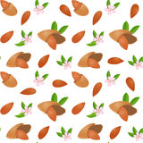 Vector seamless pattern with nuts. Appetizing, delicious background shelled almonds Stock Photos