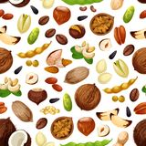 Vector seamless pattern for nuts and fruit seeds. Nuts seamless pattern. Vector coconut, almond or peanut and pistachio kernels, pumpkin and sunflower seeds Royalty Free Stock Photo