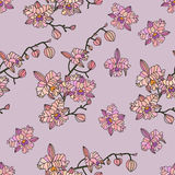 Vector seamless pattern with orchids. Stock Image