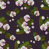 Vector seamless pattern with orchids. Stock Images