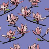 Vector seamless pattern. Ornament of twigs of magnolia flowers vector illustration