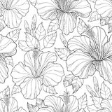 Vector seamless pattern with ornate Chinese Hibiscus flower, bud and leaves on the white background. Monochrome floral background. Royalty Free Stock Photo